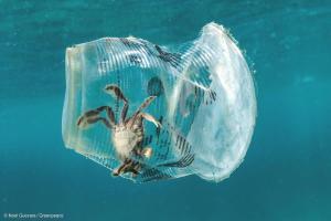 Araştırma: Avrupa'da Denizleri En Çok Kirleten Ülke Türkiye…