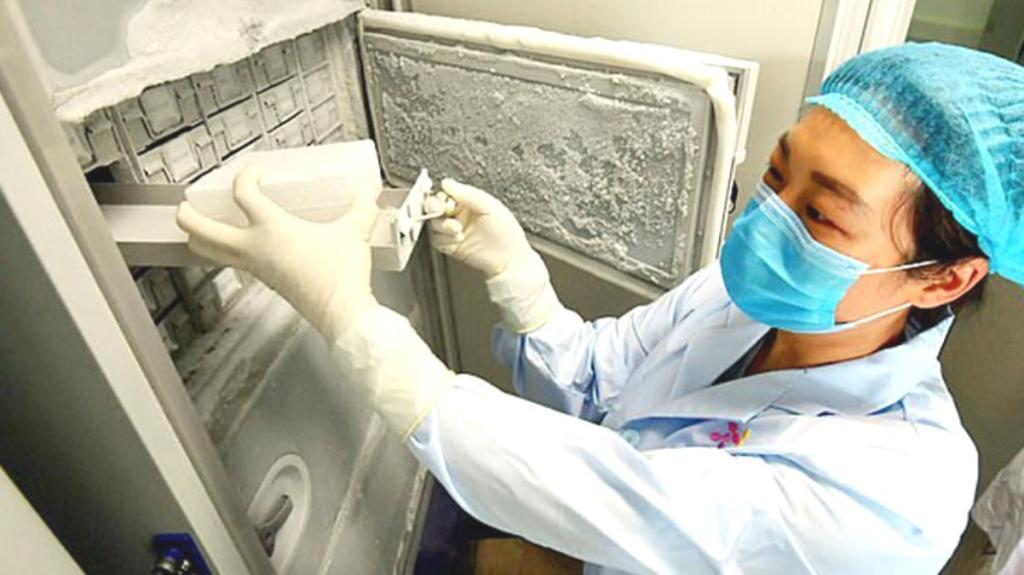 Koronayla ilgili tüm bilinenleri kökünden sarsacak araştırma: Virüsün kökeni 20 bin yıl öncesine dayanıyor