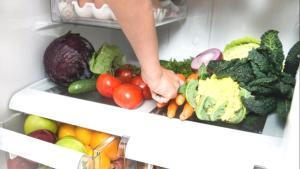 Buzdolabında ölümcül kara mantar saklanıyor