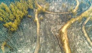 Eyyam-ı bahur orman yangınlarını nasıl etkileyecek? Sıcaklık 3 derece artarsa…