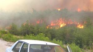 Son Dakika: Manavgat'taki orman yangınında hayatını kaybedenlerin sayısı 5'e yükseldi