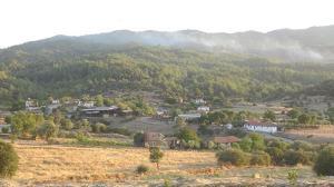 Çine'de ormanlık bölgede yeniden yangın çıktı! Bir mahalle boşaltıldı