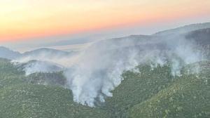 Milas'taki yangında 9'uncu gün! Önlemler artırıldı