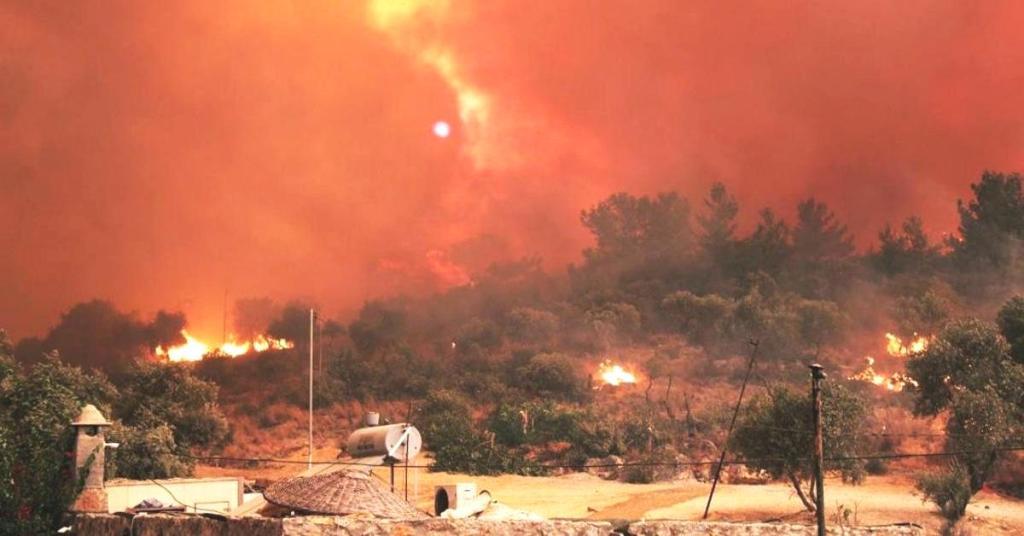 Milas'taki Yangınla Birlikte Hepimizin Aklına Takılan O Soru: Termik Santral Yanarsa Ne Olur?