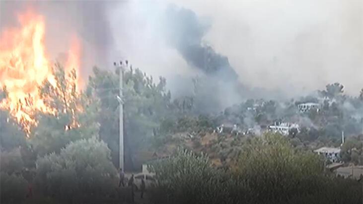 Son dakika… Mazıköyü alevlere teslim! Yangınla TOMA'lar da mücadele ediyor
