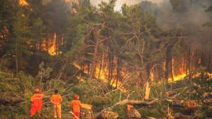 Yangın bölgesinde yeni risk! Çalışmalar hızlandı…
