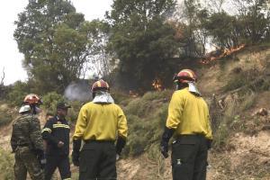 Yunanistan Başbakanı Yangınlardaki Başarısızlık Nedeniyle Bakanlıklarda Değişime Gitti