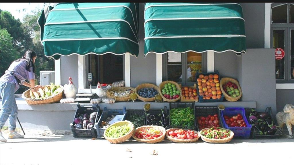 Bursa'daki tarım lisesinde doğal yöntemlerle 30 çeşit sebze ve meyve üretiliyor