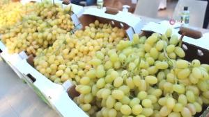 Çiftçiler, tezgahtaki üzümleriyle yarıştı