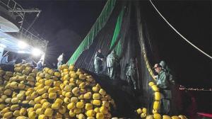 Marmara Denizi'nde balıkçılar aylar sonra ilk ağlarını çekti