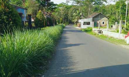 Pemanfaatan Tanah Pekarangan di Desa Binangun
