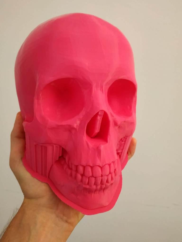 teschio stampa 3D
