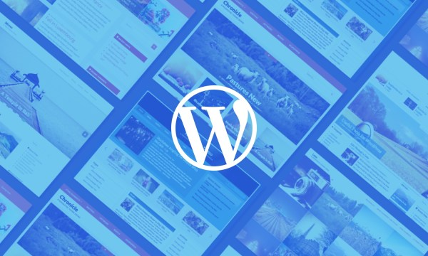 lessons-learned-20-wordpress-themes