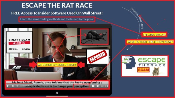 ratrace2