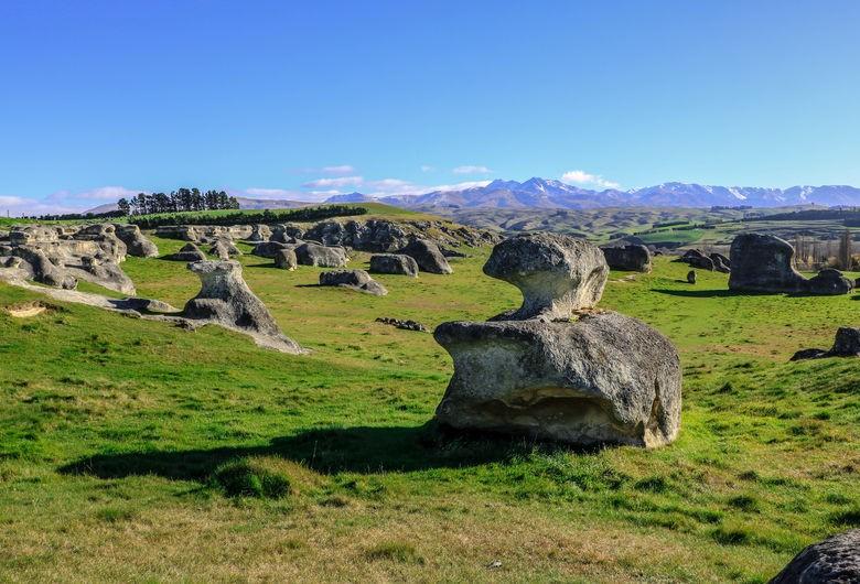 The Elephant Rocks, North Otago. PC- Tourism Waitaki