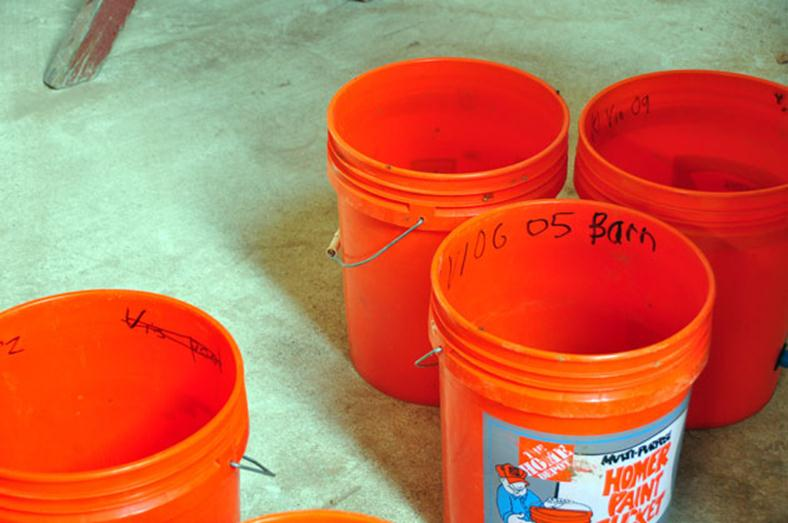 Home Depot orange bucket marked with black Sharpe to denote what type of grapes have been put into the bucket for testing to see if they are ready for harvest.