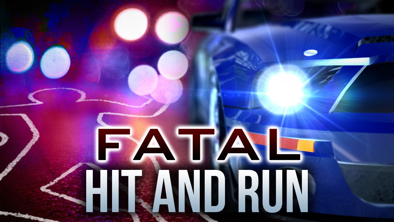 Fatal Hit and Run_1460535164867-118809198.jpg