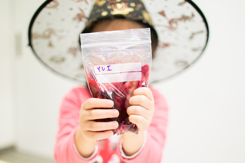 Slime in a bag super easy no mess instructions 10 minute esl super easy slime in a bag instructions ccuart Images