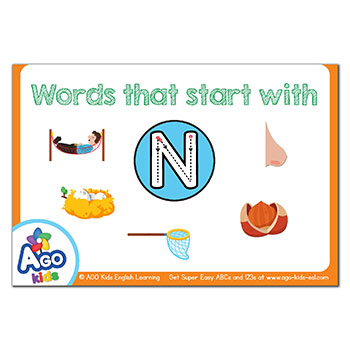 FREE Flashcards that start with the letter N