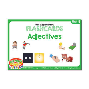 Unit 5 flashcard adjectives