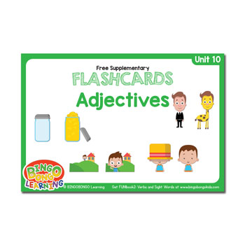 Unit 10 adjective flashcards