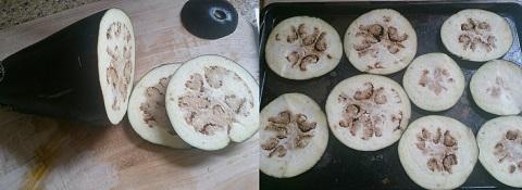 Veg Eggplant Pizza