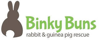 Binky Buns | Supporting abandoned and neglected rabbits and guinea pigs