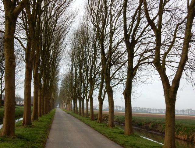 Beemster in Beeld - Havermeerweg richting de boortoren