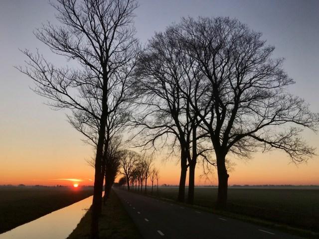 Beemster in Beeld - Beemster Hobrederweg zonsopkomst bomenrij