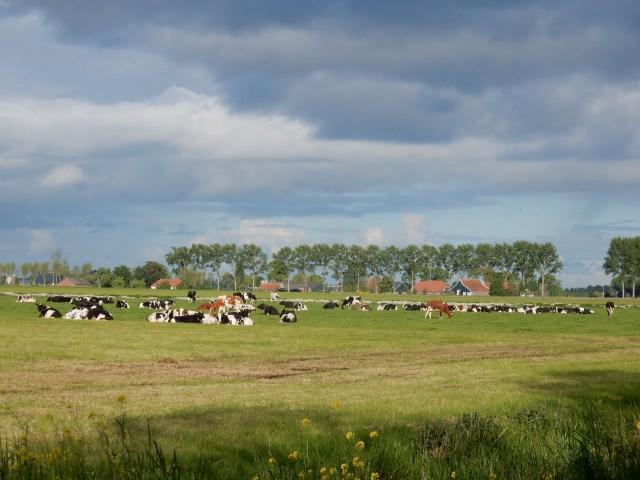 Beemster in Beeld - Kruisoorderweg richting Oosthuizerweg
