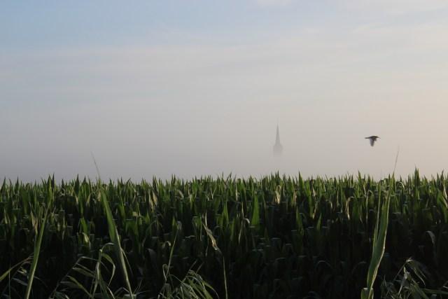 Beemster in Beeld - Hier in de Beemster hebben we geen vuurtorens, maar gelukkig wel kerktorens