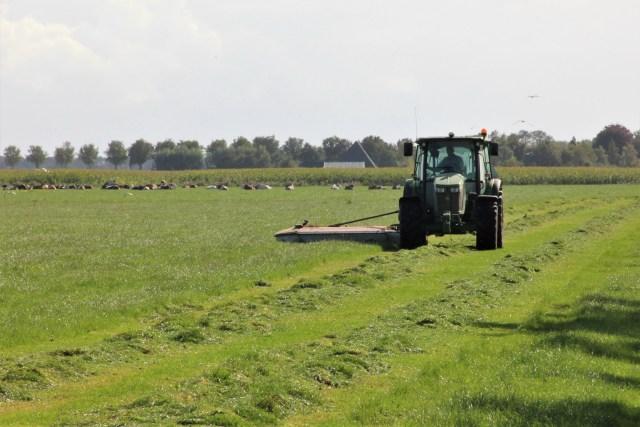 Beemster in Beeld - Gras maaien