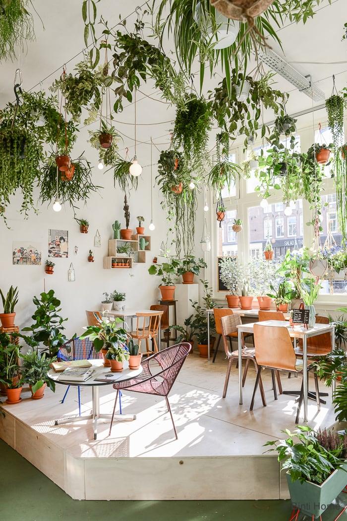 Wildernis Amsterdam © Binti Home Blog