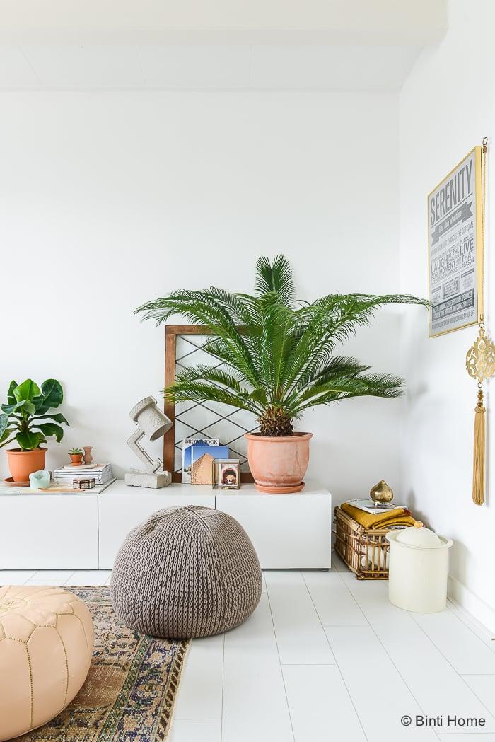 XL Hometour binnenkijken bij Binti Home veel groen in huis ©BintiHome