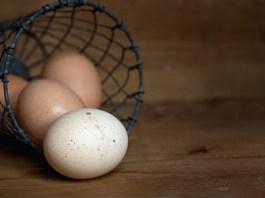 Que se passe t-il si nous mangeons 3 œufs entiers par jour ?