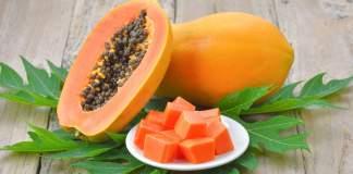 Papaye - Tout savoir sur ce fruit tropical