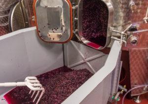 殺菌剤が使われる現在のワイン製造事情