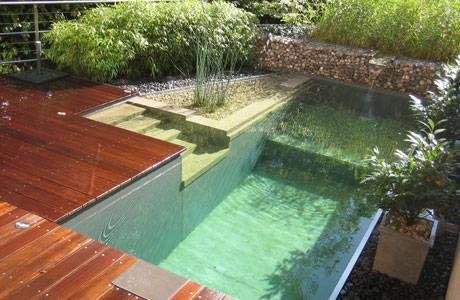 piscinas ecolgicas o naturales una buena opcin - Piscinas Ecologicas