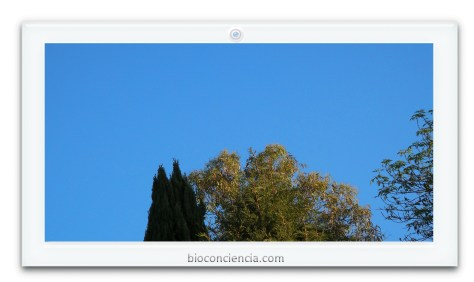hacia los cielos bioconcienicia