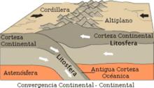 Orogenia alpina