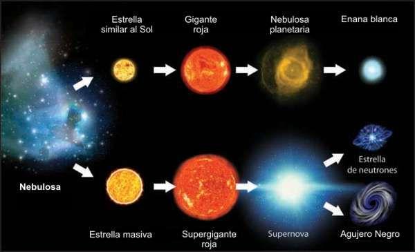 El ciclo de las estrellas