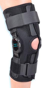 Velocity Hinged Knee (Anterior Closure)