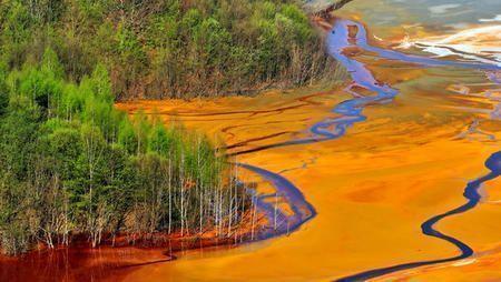 Coca Cola Pepsi Danone y Nestle las empresas que mas contaminan al planeta large