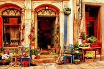 flower-shop-644602_640