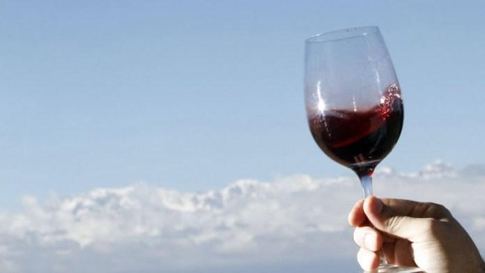 Impacto de la vitivinicultura en la economía argentina