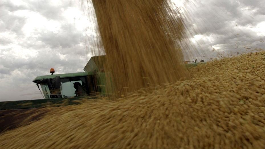 China flexibiliza regulaciones para la importación de soja