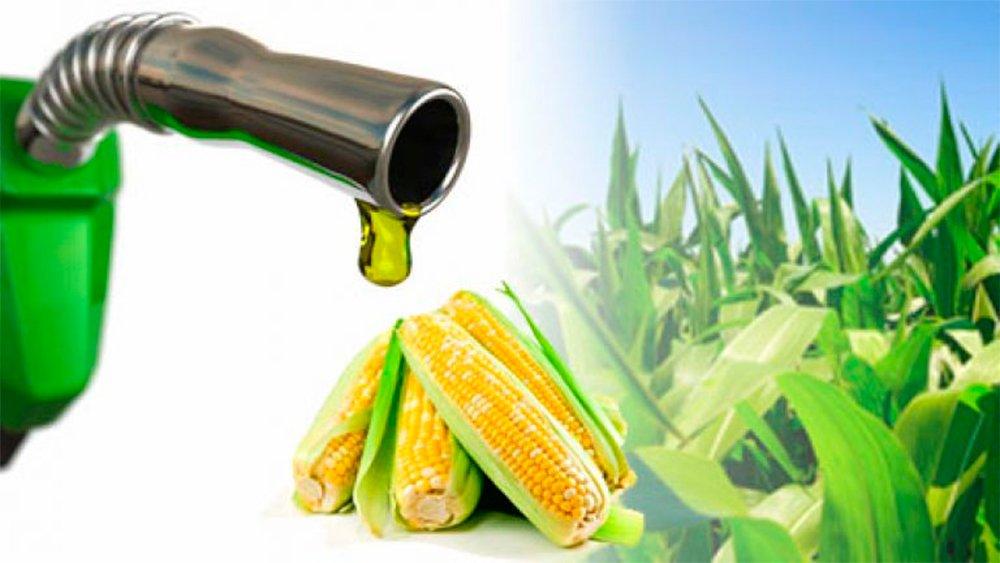 La Cámara de Bioetanol de Maíz expresa su preocupación por la Seguridad Jurídica en Argentina