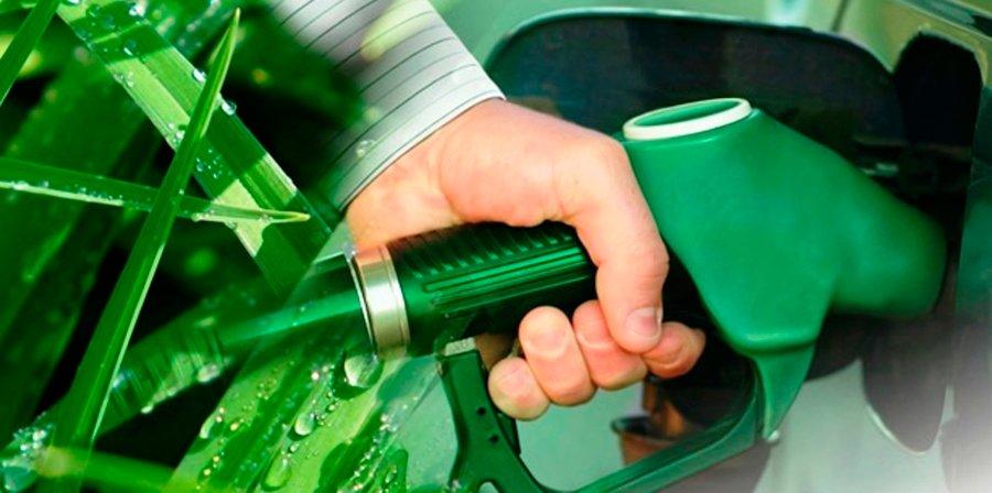 Bolivia: ingenios azucareros proyectan inversión de US$ 500 millones para producir etanol
