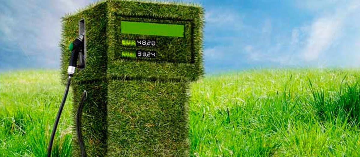 Impulsar los biocombustibles, una estrategia para  la recuperación económica post-covid