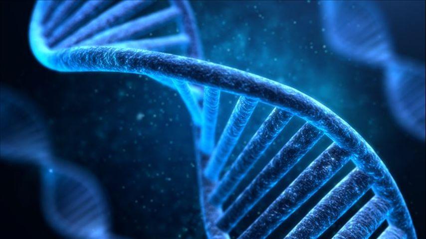 Bayer apuesta por la biotecnología